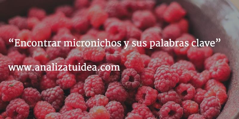 micronichos-palabras-clave-especificas
