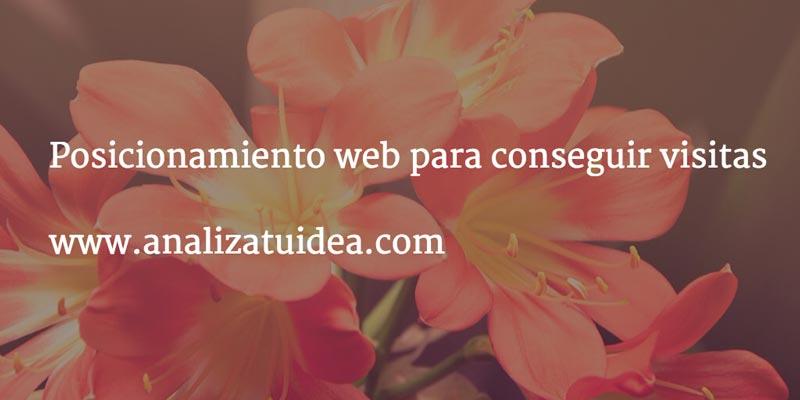 posicionamiento-web-conseguir-visitas
