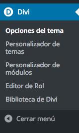 divi-theme-wordpress-opciones-personalizacion